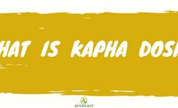 What is Kapha Dosha